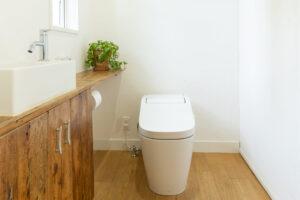 トイレの詰まりをDIYで解決!詰まりの原因も紹介!