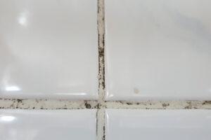 お風呂掃除には重曹とクエン酸がおすすめ!